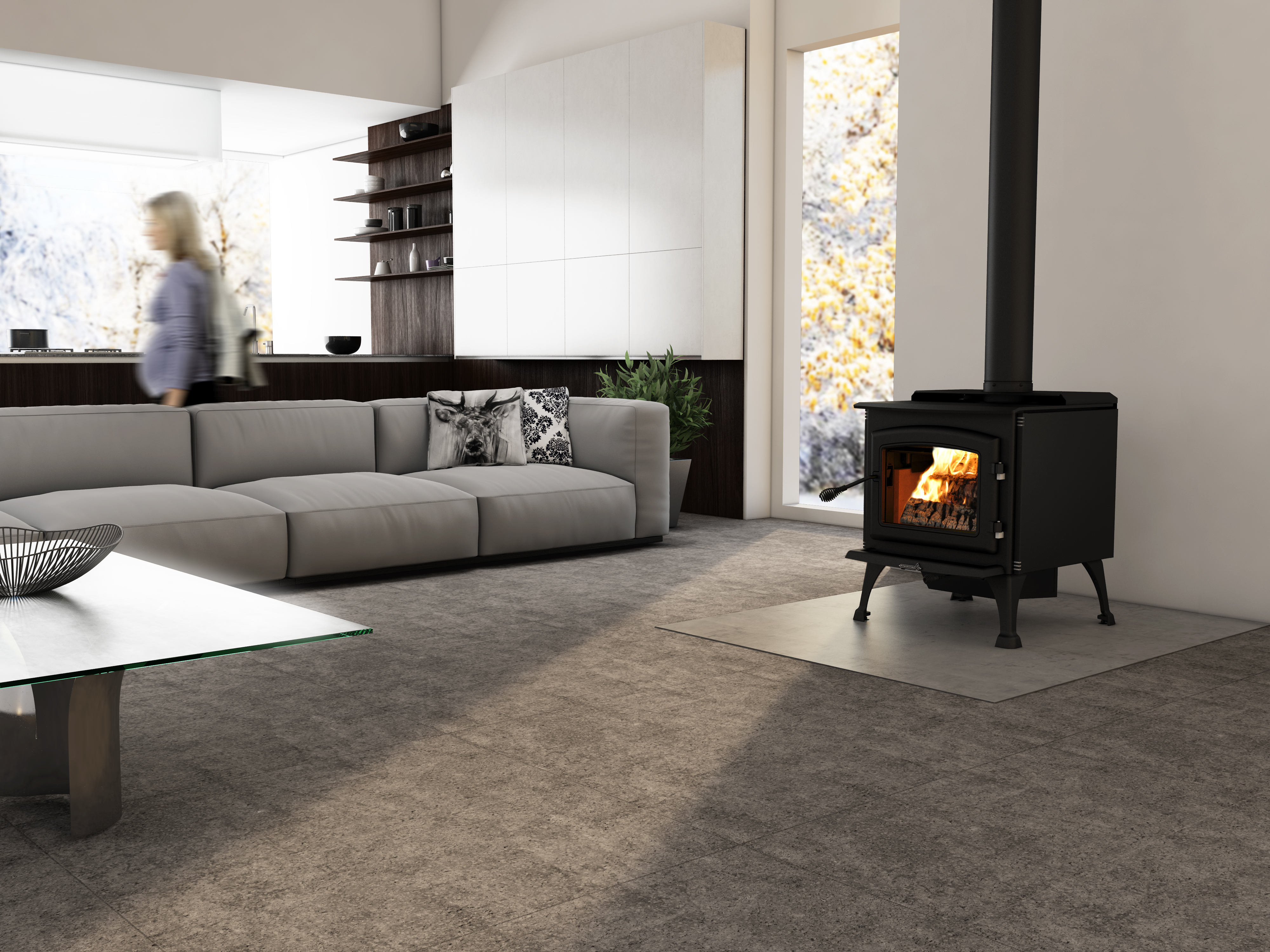 Difference Poele A Bois Et Insert solution 2.9 | wood stoves | enerzone